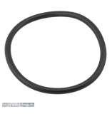 O-Ring für Sta-Rite 5P2R